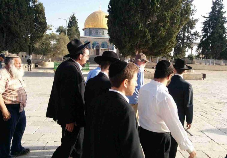 יהודים בהר הבית