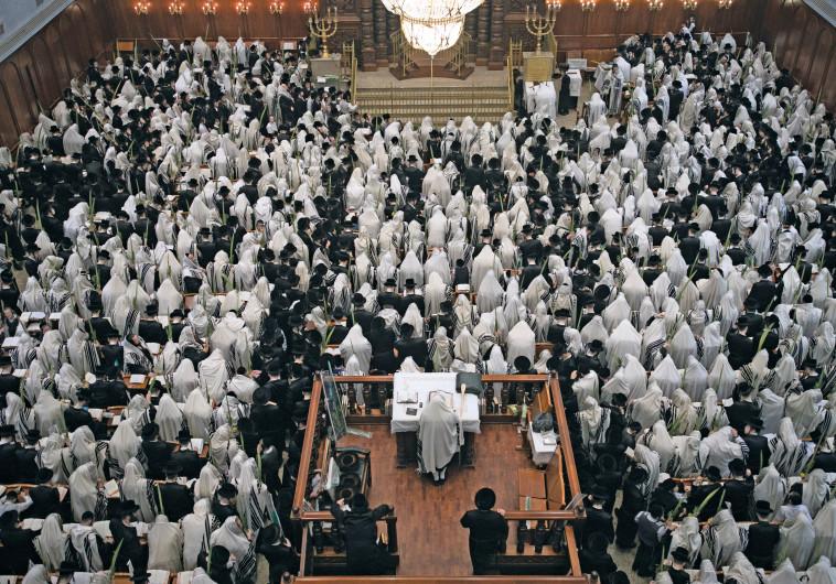 חרדים מתפללים בבית כנסת, אילוסטרציה