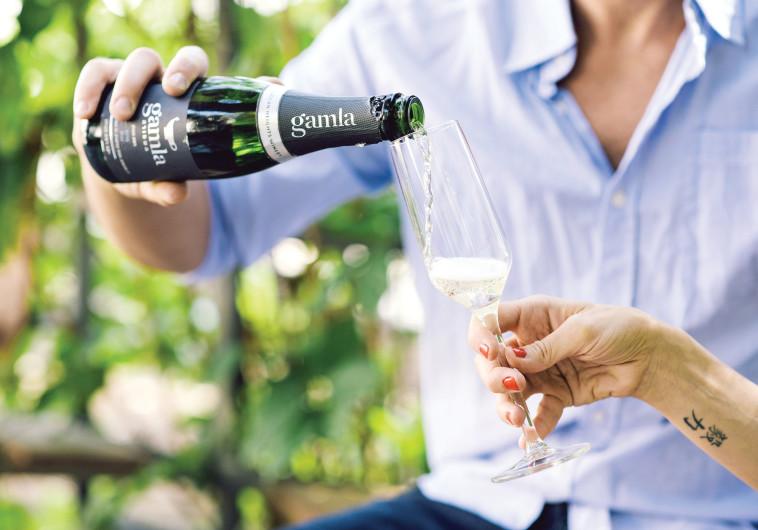 יין gamla