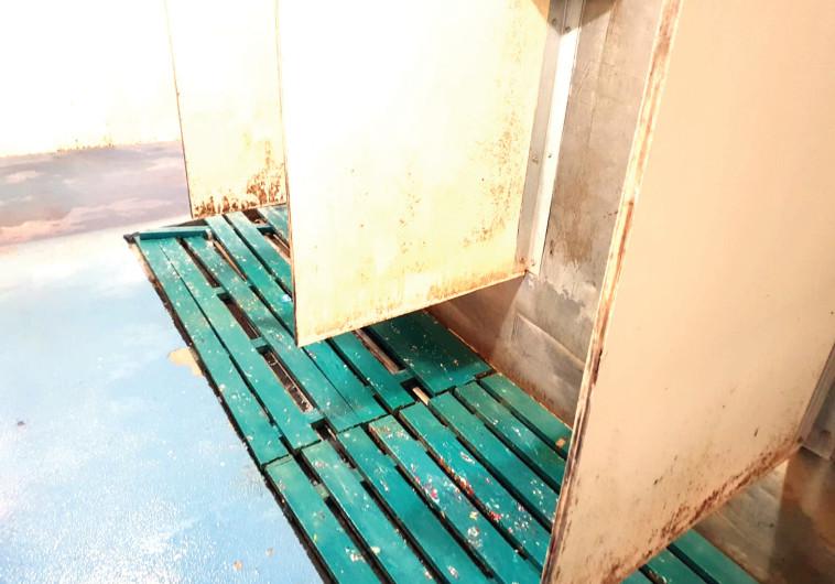 מקלחות בצריפין