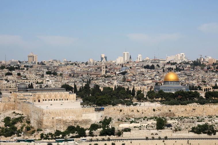ירושלים. מספקת את כל החבילה: חמורת סבר ומסבירת פנים. צילום: מרק ישראל סלם