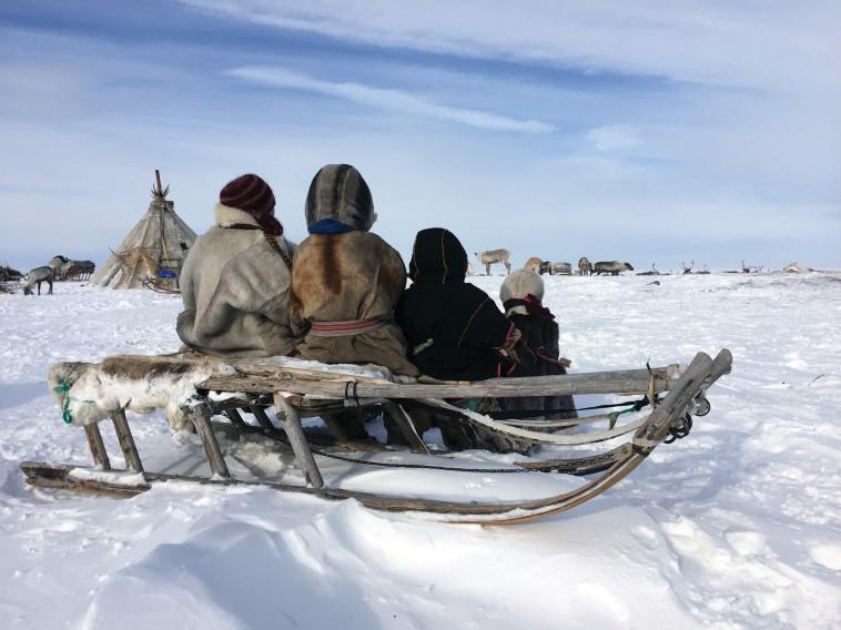 MyHeritage :בני שבט הננץ בסיביר. צילום