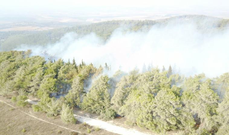 """השריפה ברמות מנשה. צילום: קק""""ל"""