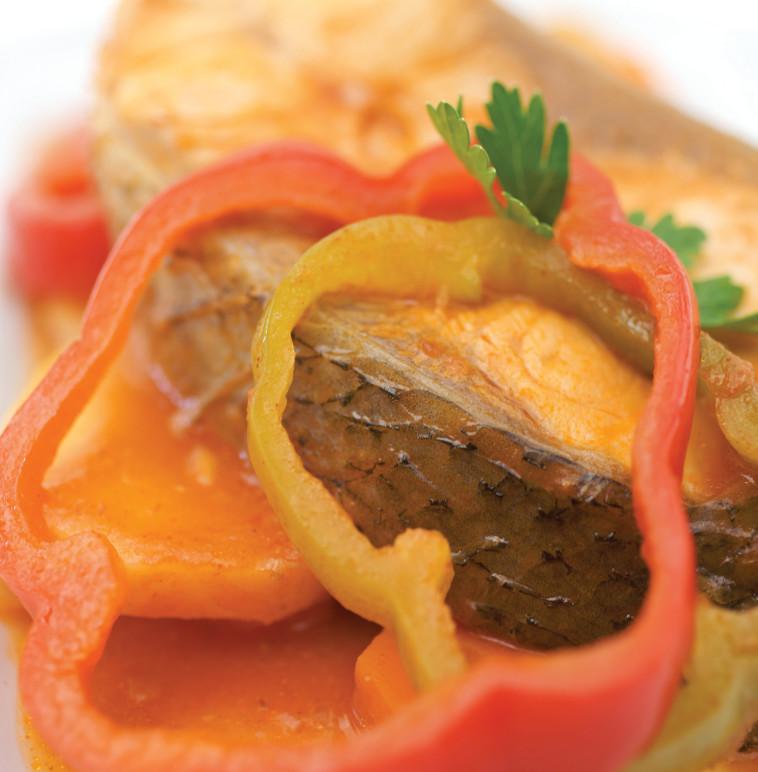 פילה לוקוס על מצע ירקות. צילום: דרור כץ