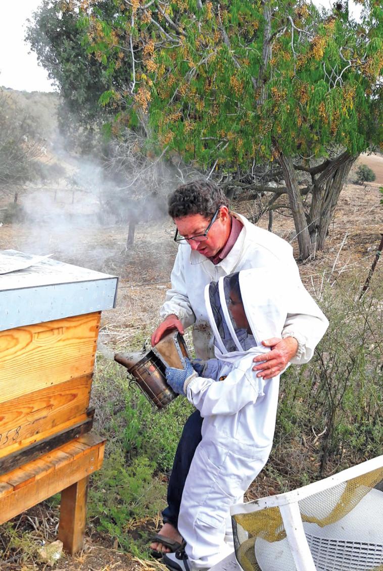 האמיצים יוכלו ללטף דבורים