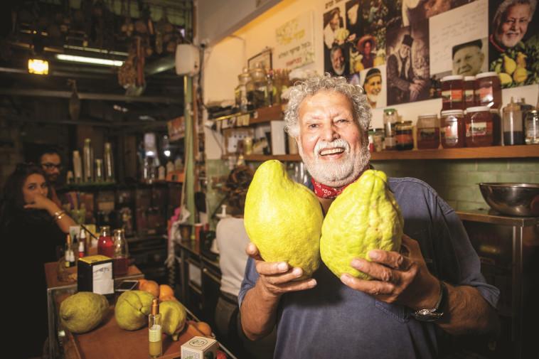 """""""אוכל אתרוגים במקום פירות"""". צילום: יונתן זינדל, פלאש 90"""