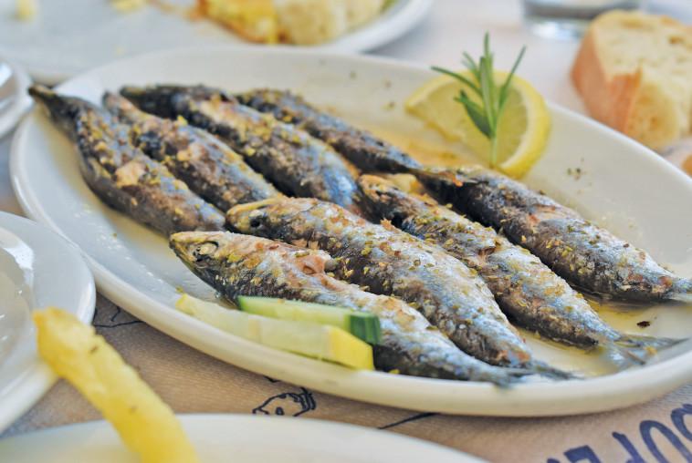 דגים טריים מהים. צילום: מיטל שרעבי