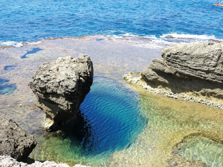חוף הים. צילום: מיטל שרעבי
