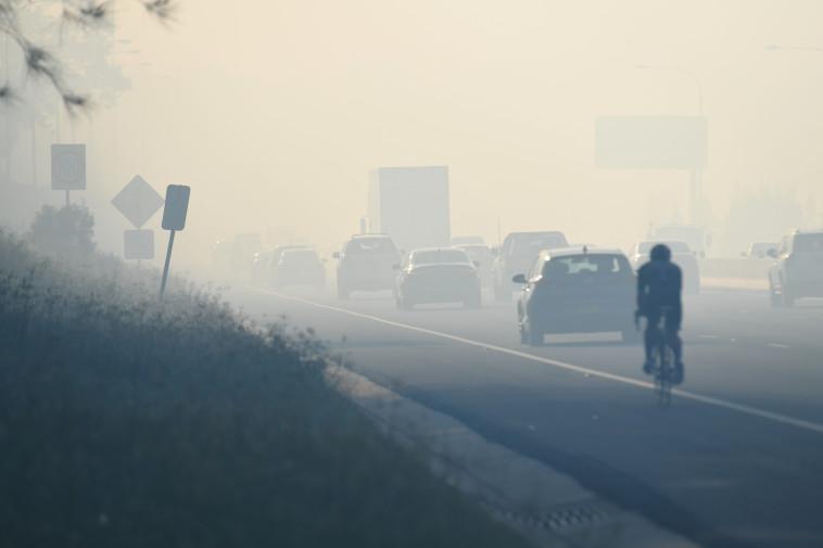 רכבים נוסעים בכביש אפוף עשן מהשריפות בסידני. צילום: רויטרס