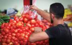 עגבניות, אילוסטרציה
