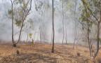 שריפות בעוטף עזה