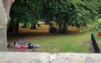 אורגיה בפארק