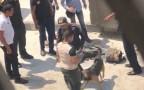 """כוחות הביטחון מחוץ לשגרירות ארה""""ב בקהיר"""