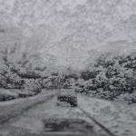 שלג בברלין