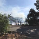 שריפה במחלף קוממיות