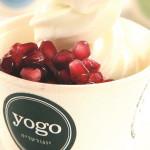 גלידת יוגורט עם תוספות