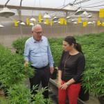 אורי אריאל ואיילת שקד בחווה לגידול קנאביס