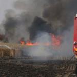 שריפה סמוך ליישוב בארי