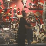 מוזיאון הטבע המחקרי בתל אביב