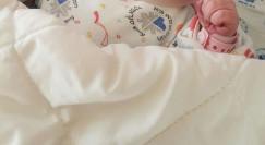 תינוקת, בר רפאלי