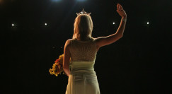 מלכת יופי, אילוסטרציה