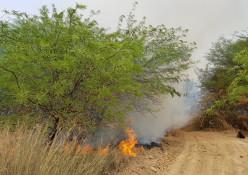 שריפה באזור כיסופים