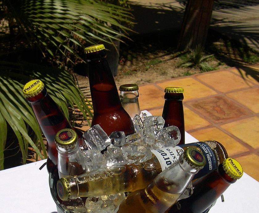 """בירות לקחת לסוכה - קחו בירה טובה לצד מנה מתאימה ושדרגו לכם את ההנאה (צילומים: יח""""צ, Donald Cook.freeimages.com)"""