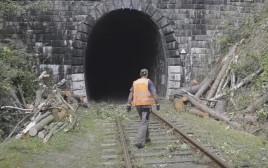 חיפושים אחר רכבת הזהב הנאצית