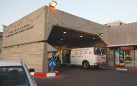בית החולים שיבא, תל השומר