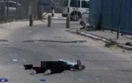 אח ואחות נורו במחסום קלנדיה לאחר ששלפו סכין