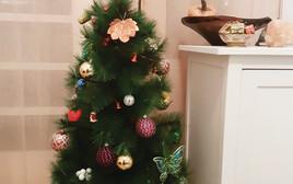 עץ חג המולד של שחר בן-פורת