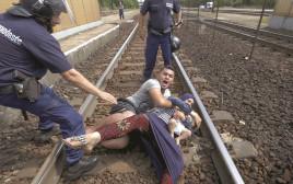 פליטים סורים בהונגריה