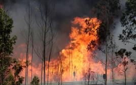 שריפה בפורטוגל