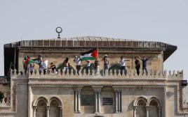 דגל פלסטין במסגד אל אקצה