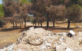 פסולת בניין ביער