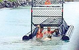 הצעירים ומלכודת קרוקודילים באוסטרליה