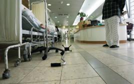 """בית החולים """"ברזילי"""""""