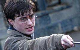 הארי פוטר ואוצרות המוות מתוך הסרט