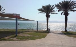 חוף חלוקים בכנרת