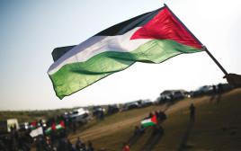 דגלי פלסטין באירועי יום האדמה באום אל־חיראן, מרץ 2016