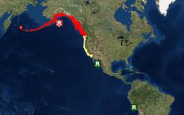 מוקד רעש האדמה ואזהרות הצונאמי בחוף המערבי של צפון אמריקה
