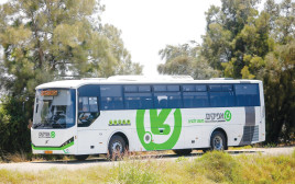 אוטובוס של אפיקים