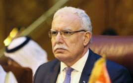 ריאד אל-מאלכי