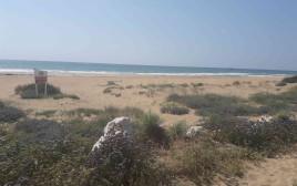 חוף כזיב
