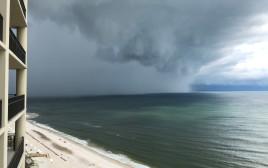 הסופה אלברטו