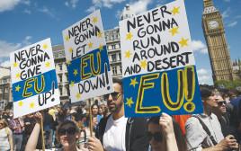 הפגנה נגד הברקזיט