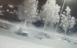 הרכב שהתהפך במהלך בריחה מהמשטרה