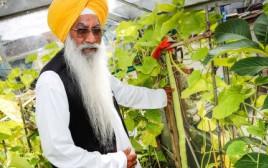 סבא מגדל את המלפפון הארוך בעולם