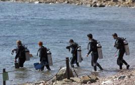 צוללנים בחוף באילת