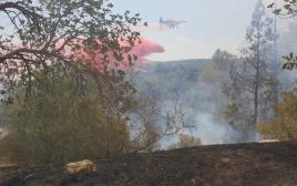 אחת השריפות ביער בארי